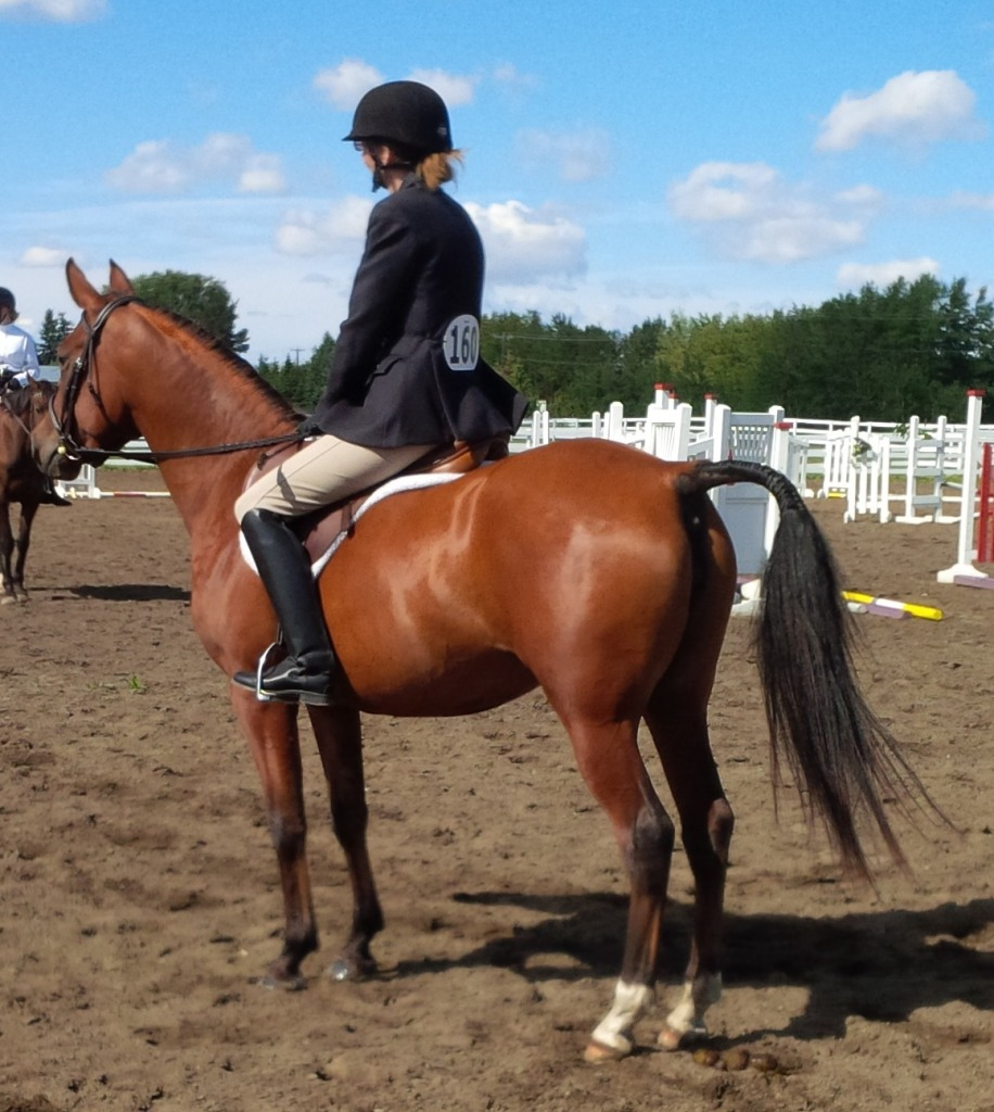Elegant Dancer showing at Maple Leaf Meadows
